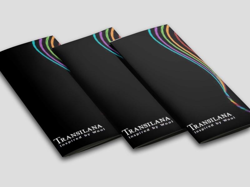 company-profile-transilana