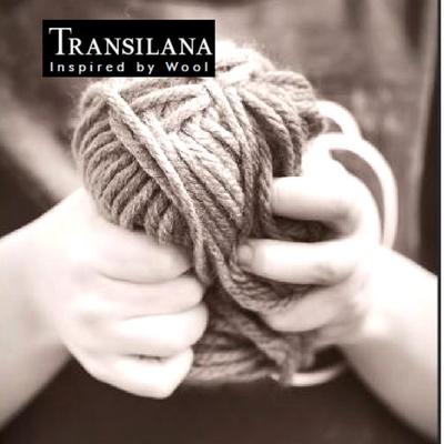 Fotografie proces tehnologic Transilana