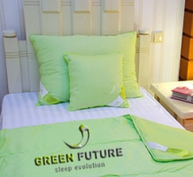 GREEN FUTURE – Rebranding, PR, publicitate.